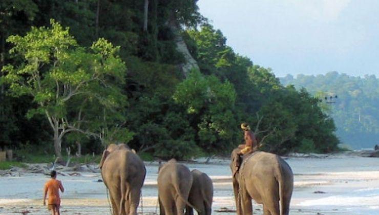 Le tourisme durable : la nouvelle tendance voyage