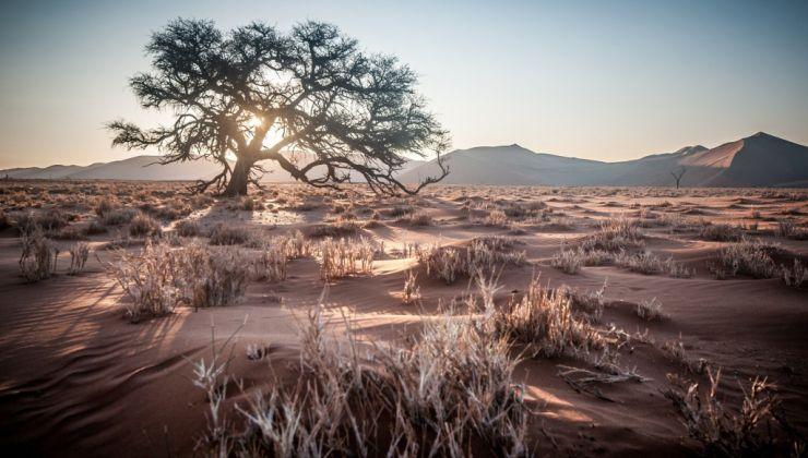 Vivre des moments inégalables lors des séjours au cœur de la Namibie