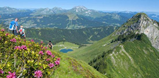 FRANCE MONTAGNE Morzine - Avoriaz - Alpes du Nord - été