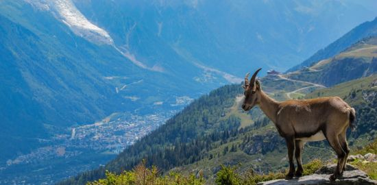 FRANCE MONTAGNE Les Karellis - Savoie - été